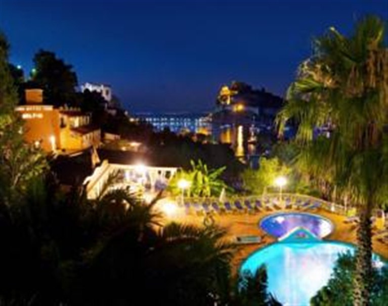 Hotel Dei Delfini Ischia